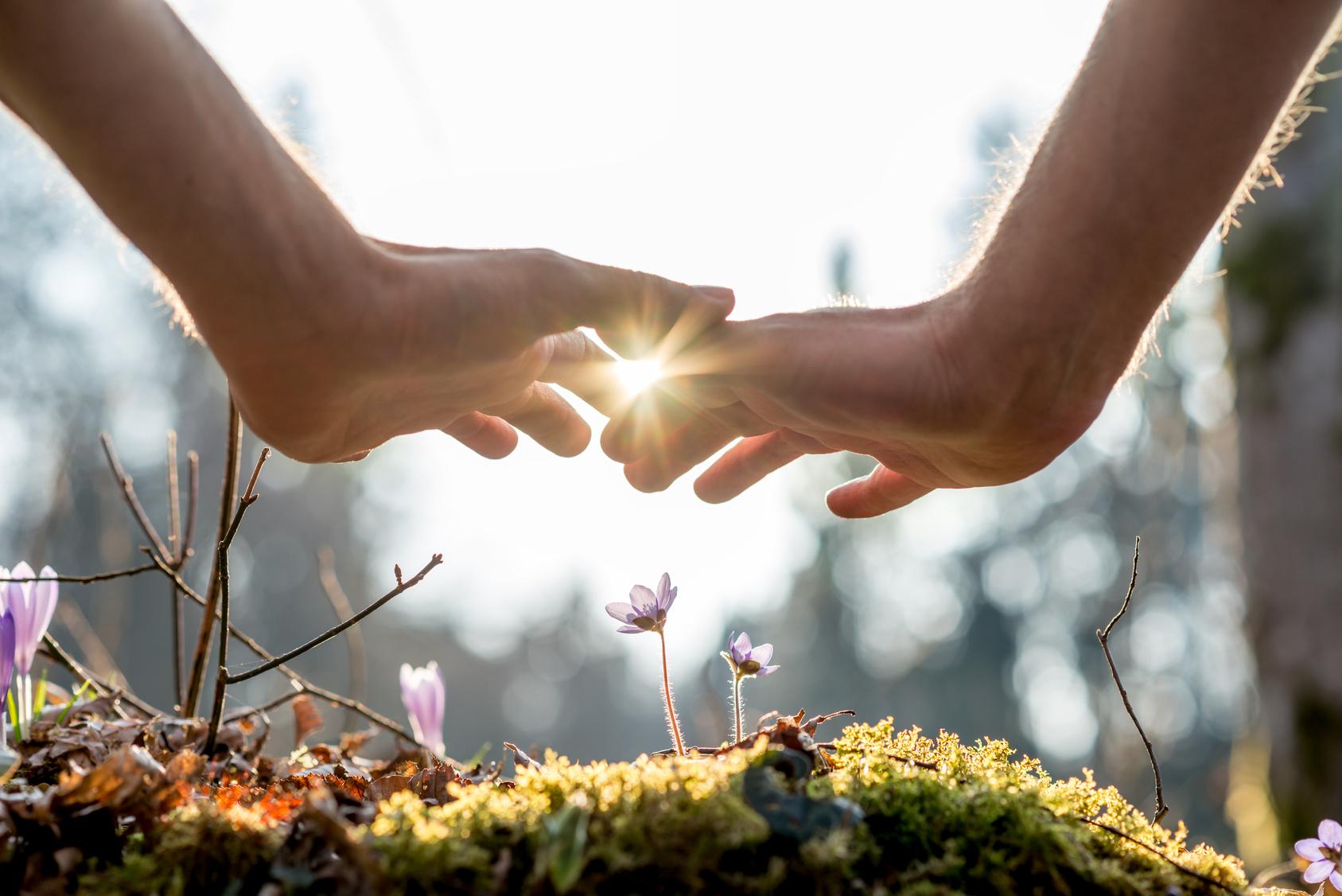 Ayurveda Behandlung und Therapie in Bad Zurzach. Energietreffpunkt für Harmonie - Körper, Geist & Seele in Einklang bringen und die Selbstheilungskräfte aktivieren